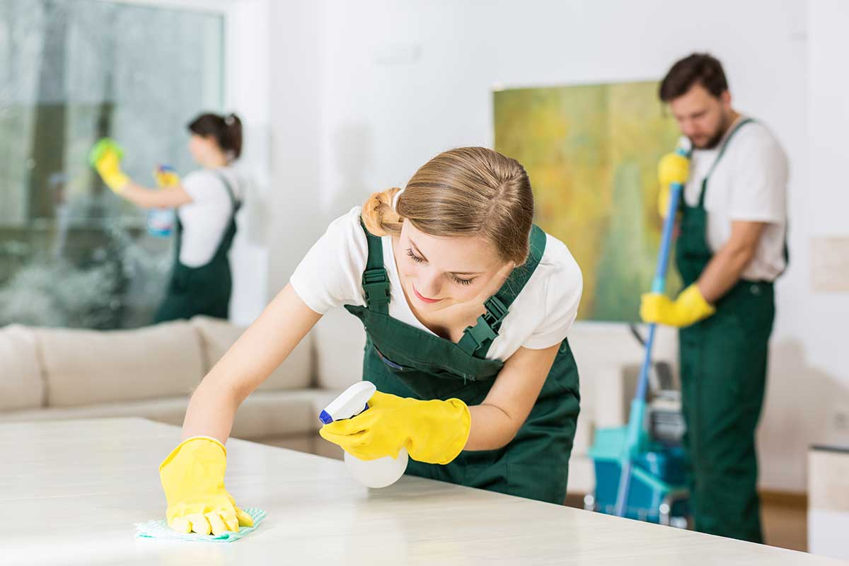 vernon house cleaning service